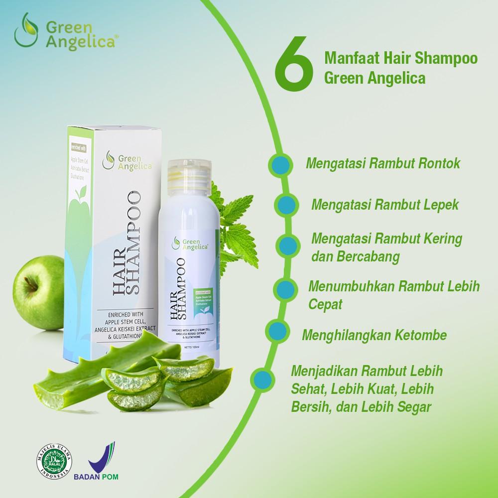 Shampo Penumbuh Rambut Alami Green Angelica Mengatasi Rambut Rontok dan  Ketombe Halal dan BPOM  22f4d84328
