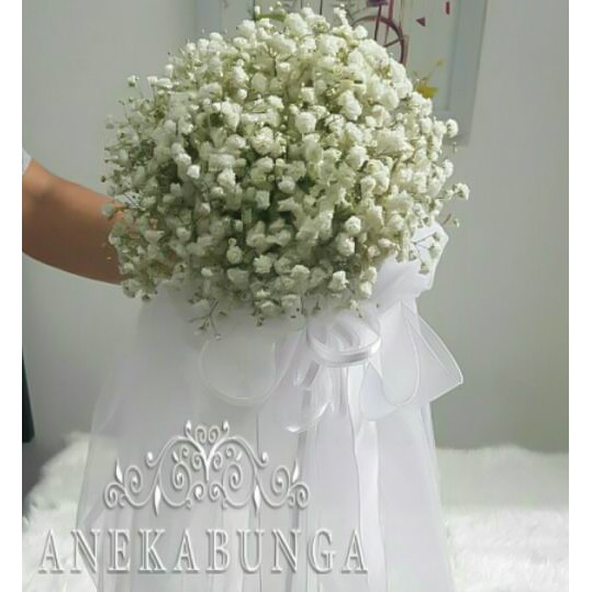 Buket Bunga Pernikahan Baby Breath Asli Fresh Hand Bouquet Wedding Flower Bucket Pengantin Bride Box Shopee Indonesia