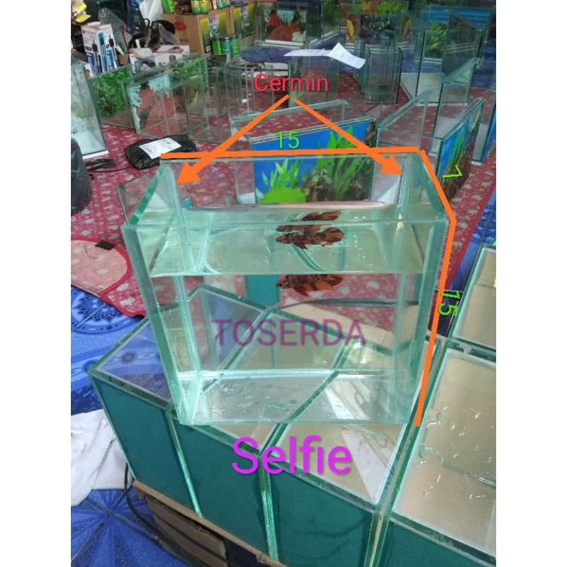 Akuarium Cupang Selfi Akuarium Selfie 15x7x15 Aquarium Mini Untuk Foto Cupang Guppy Fish Aquarium Shopee Indonesia