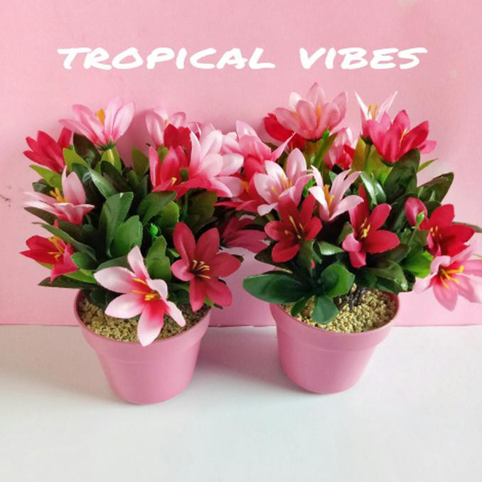 Download 8100 Koleksi Gambar Bunga Melati Dari Plastik Paling Cantik