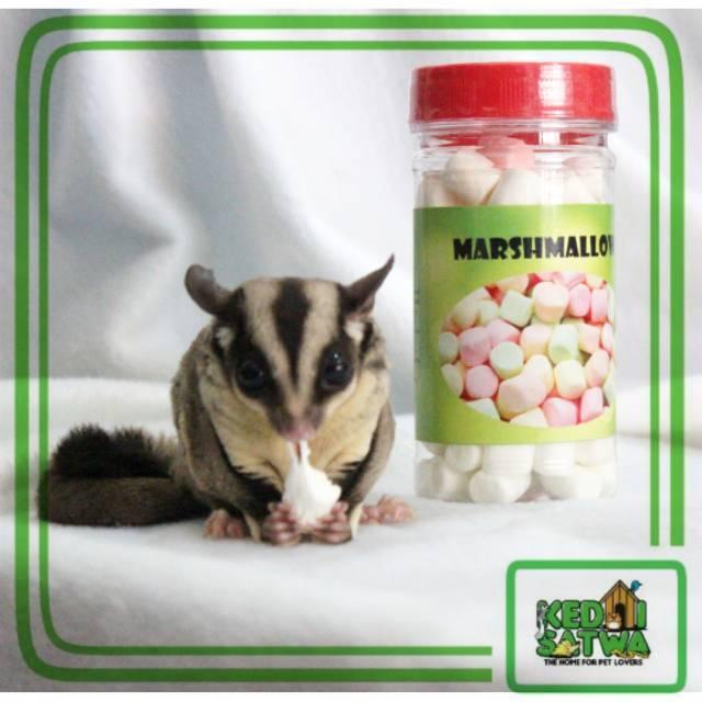 Marshmallow Makanan Sugar Glider Hamster Musang Kedai Satwa