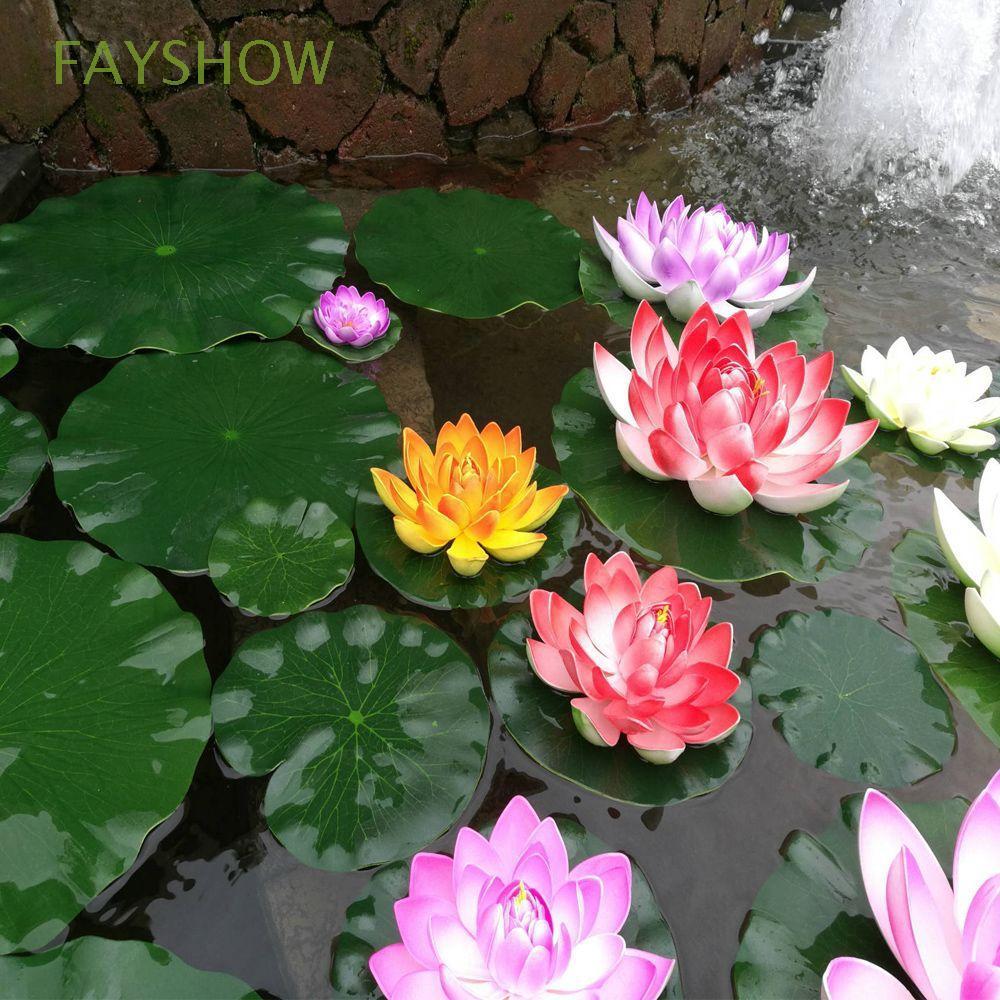 castella77 5PCS Lotus seed benih bunga teratai flower biji tanaman air aquascape | Shopee Indonesia