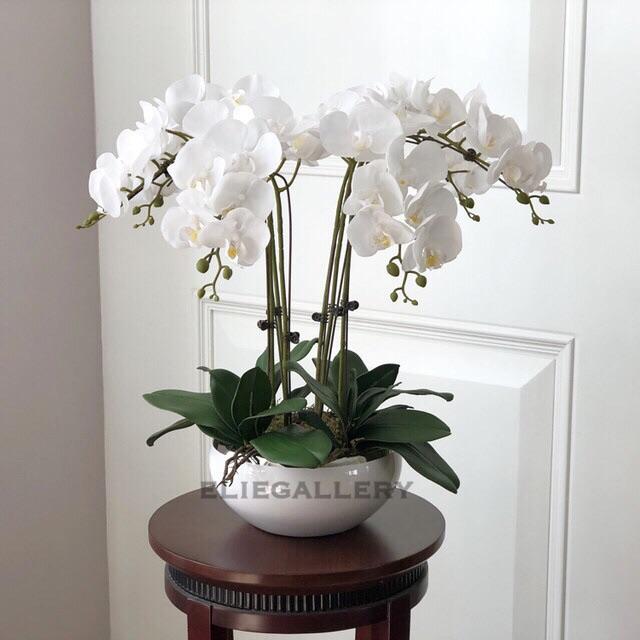 Bunga ANGGREK LATEX ARTIFICIAL   Orchid Import - PUTIH   Dekorasi Rumah  Shabby  a3e17974ee