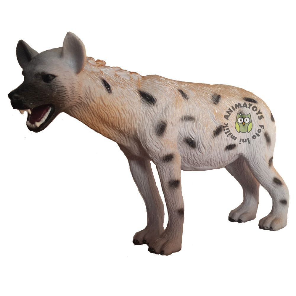 43+ Hewan hyena terbaru