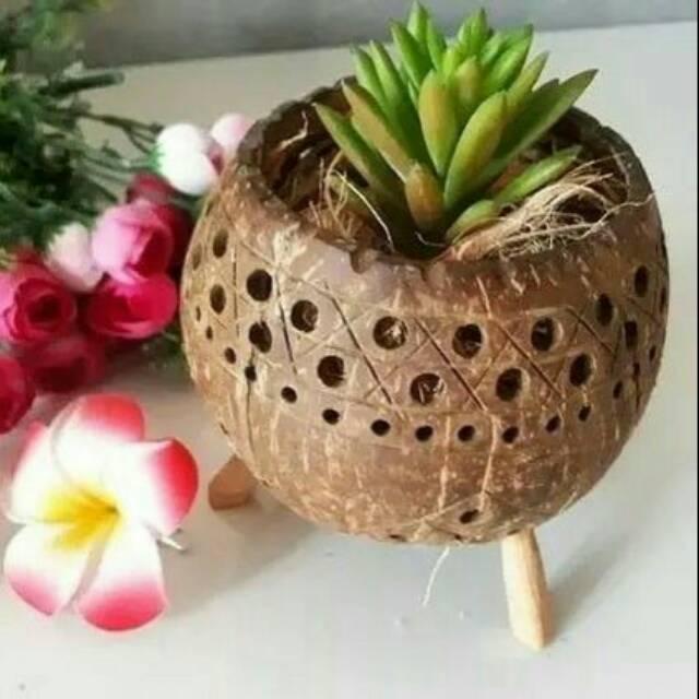 Pot Bunga Ukir Murah Dari Batok Shopee Indonesia