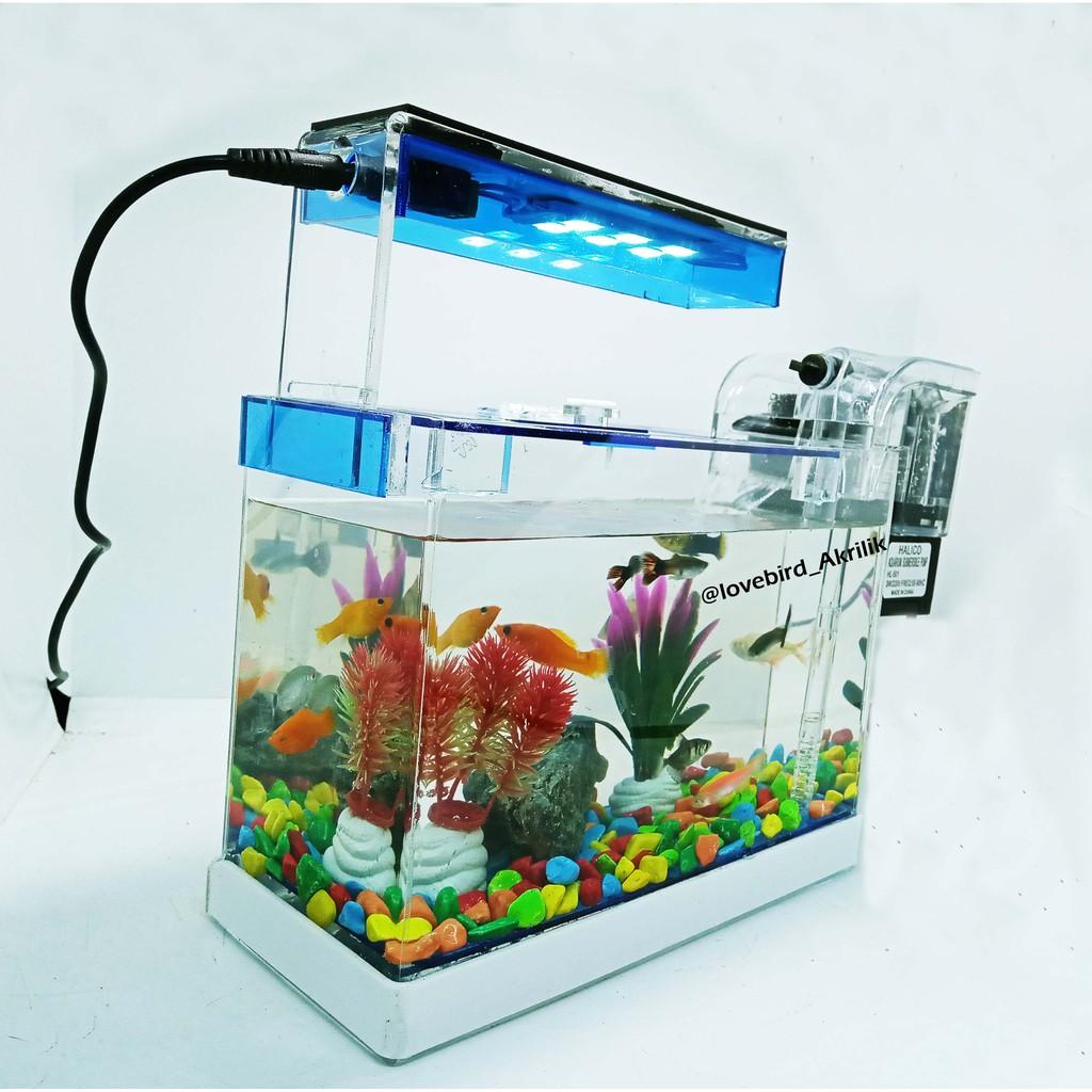 Aquarium Mini Aquarium Akrilik Aquarium Lengkap Aquarium Ikan Hias Mini Aquarium Aquarium Kecil Shopee Indonesia