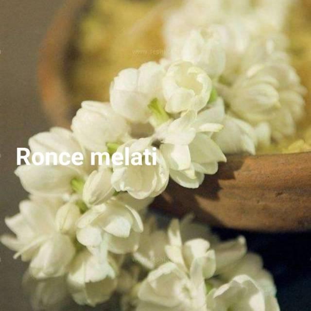 Ronce Melati Asli Shopee Indonesia
