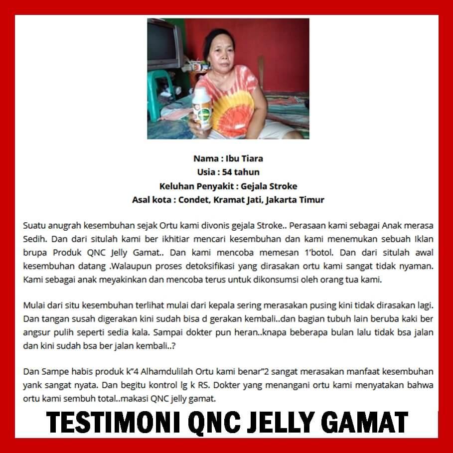 Obat Herbal Stroke Terbaik 100 Alami Qnc Jelly Gamat Shopee
