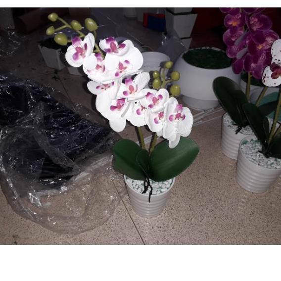 Dg 928 Bunga Anggrek Semi Latex Bunga Vas Bunga Anggrek Bulan Anggrek Lateks Bunga Artificial H Shopee Indonesia