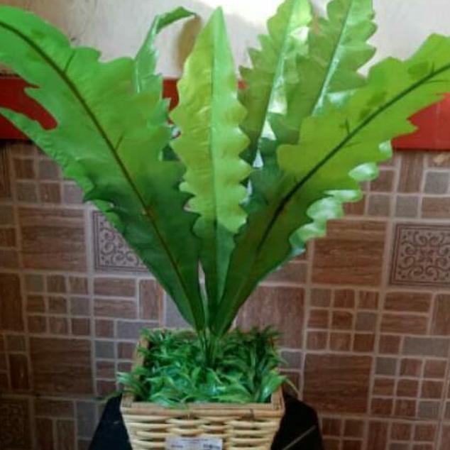 Dgv Daun Gelombang Cinta Daun Plastik Dekorasi Bunga Palsu