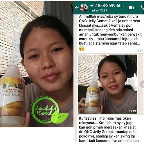 Manfaat Jelly Gamat Qnc Untuk Jerawat Meradang