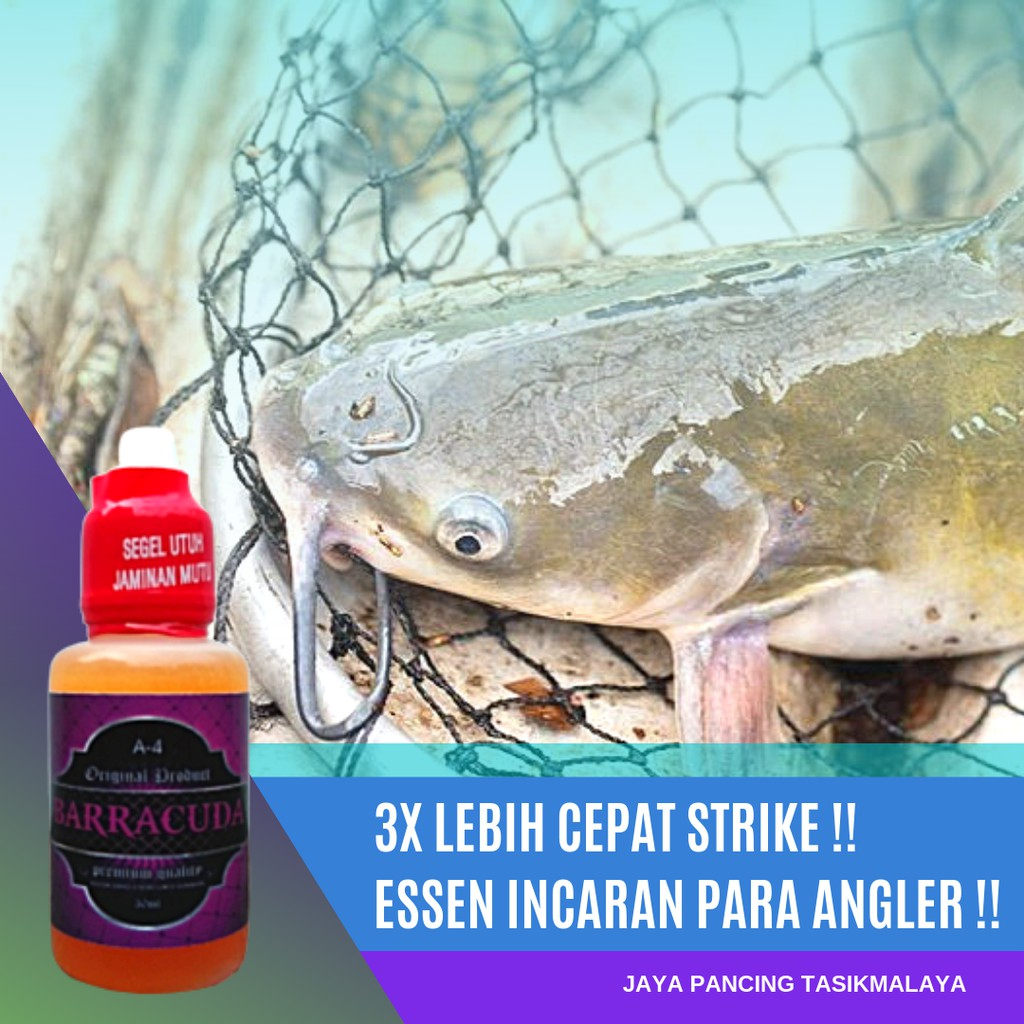 Essen Oplosan Ikan Lele Galatama Paling Jitu Dan Ampuh Original Shopee Indonesia