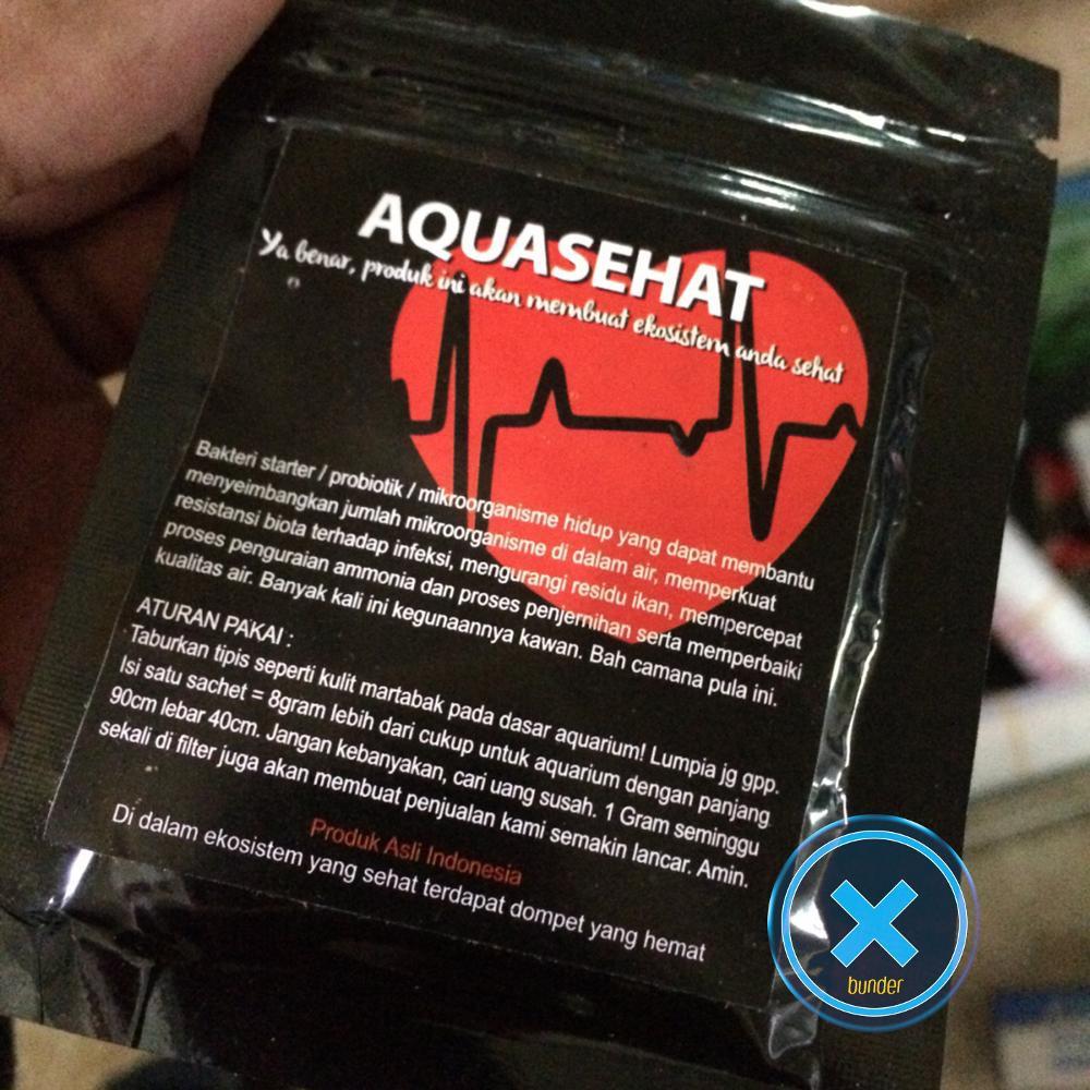 Bucephalandra Tanaman Air Aquascape Shopee Indonesia Fisiden Moss Lempeng Super