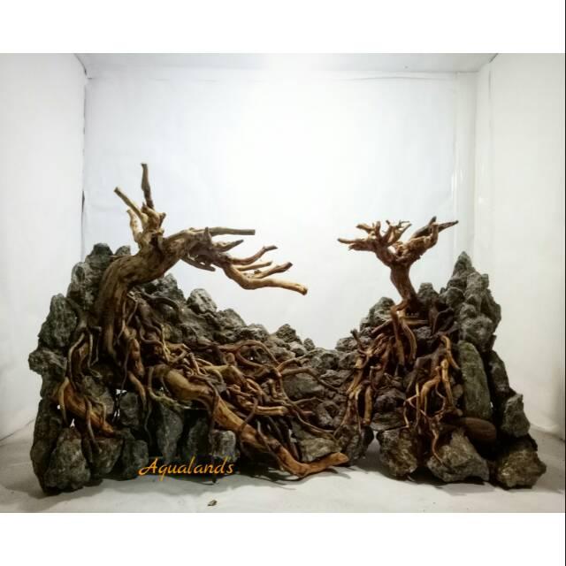 Hardscape Aquascape Jungle dan diorama akar kayu rasamala ...