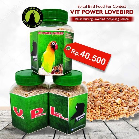 ... Burung Lovebird Lomba Dan Kontes. Vit Power Lovebird Pakan Lovebird Lomba Shopee Indonesia