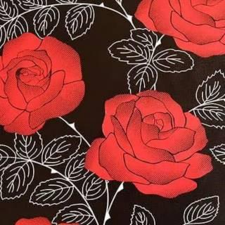 Download Kumpulan Wallpaper Bunga Mawar Merah  Paling Baru