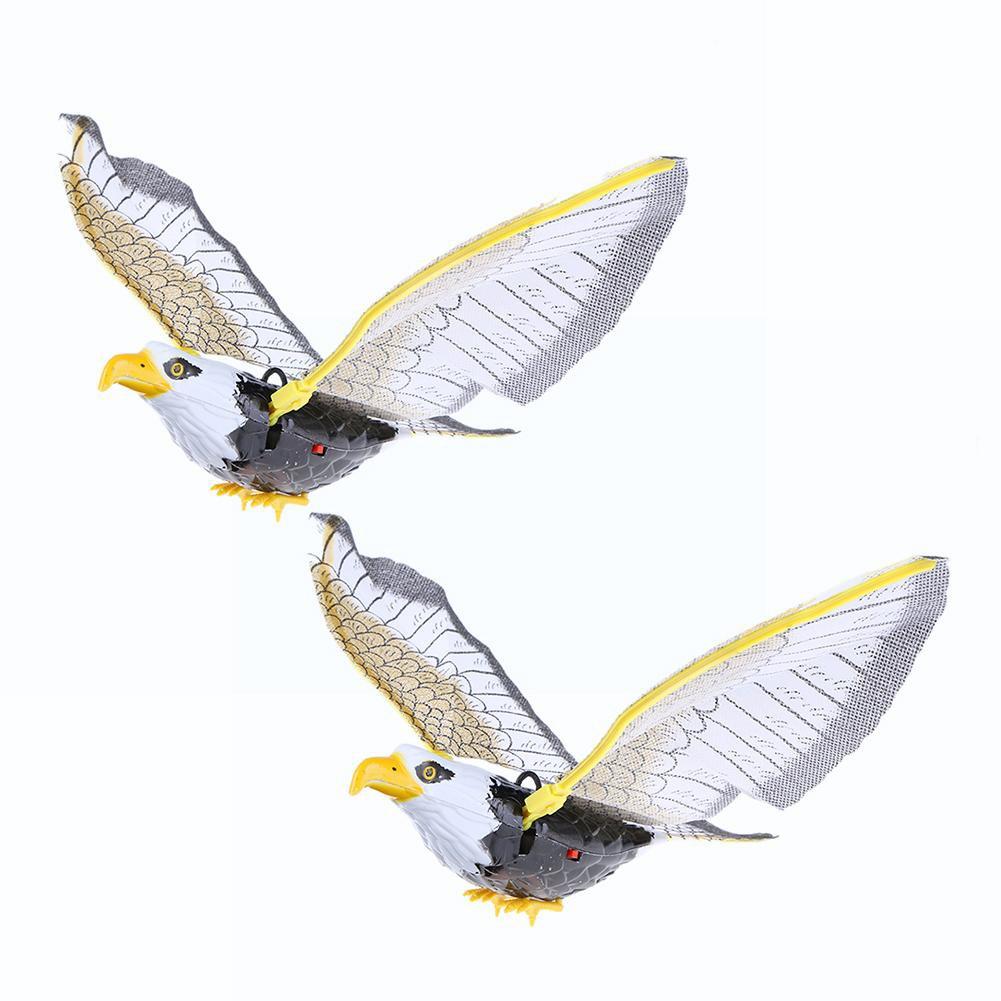 62 Foto Gambar Burung Elang Terbang Bergerak HD Terbaru Gratis