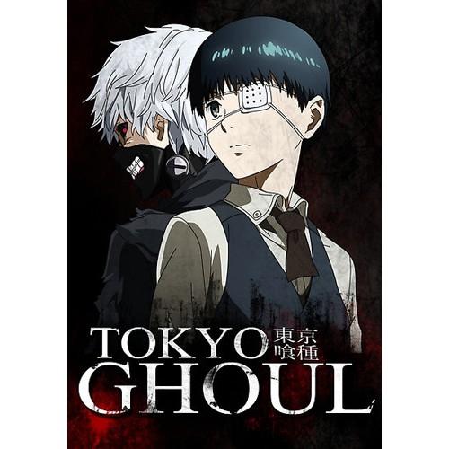 Dvd Anime Tokyo Ghoul Sub Indonesia Shopee Indonesia