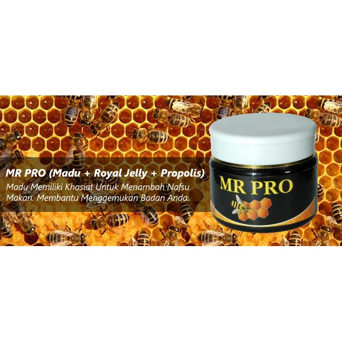 MR PRO HWI Formula Multivitamin Madu Murni Propolis Jelly Suplement Penambah Berat Badan   Shopee Indonesia