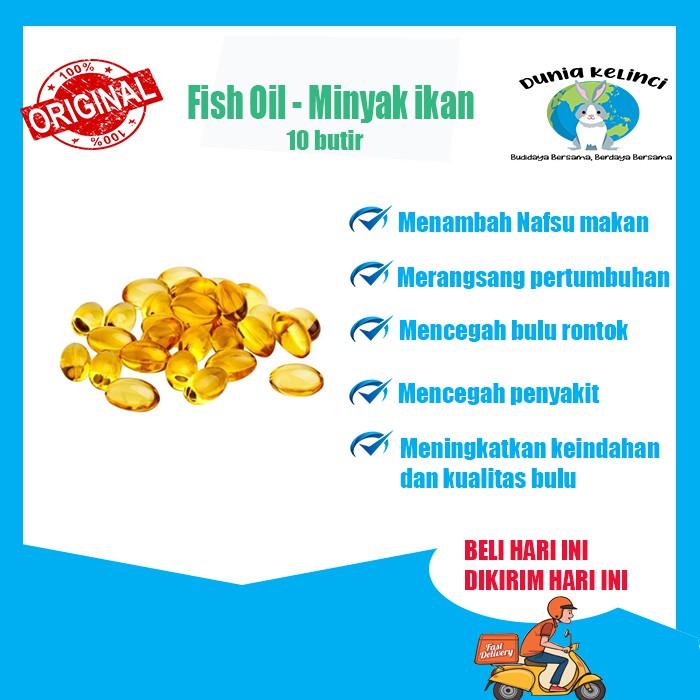 SHAMPOO  KELINCI KUCING ANIMAL CARE WANGI ANTI KUTU JAMUR  CONDITIONER-10 Fish Oil