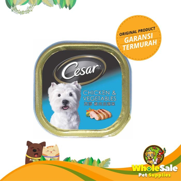 Makanan Anjing Cesar Chicken And Vegetables 100gr Shopee Indonesia