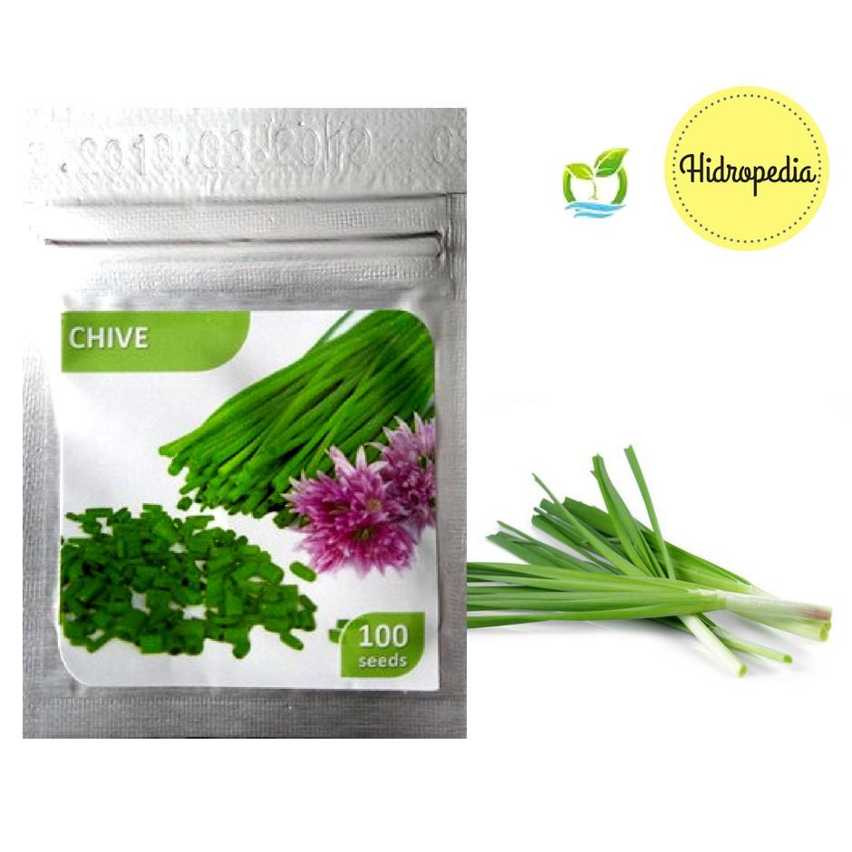 20 Benih Herbal Kucai / daun Bawang Prei / Chives F1 Mr. Fothergills Bibit tanaman