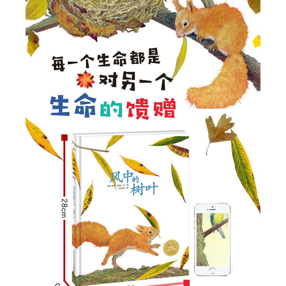 Buku Gambar Lumba Lumba Untuk Anak
