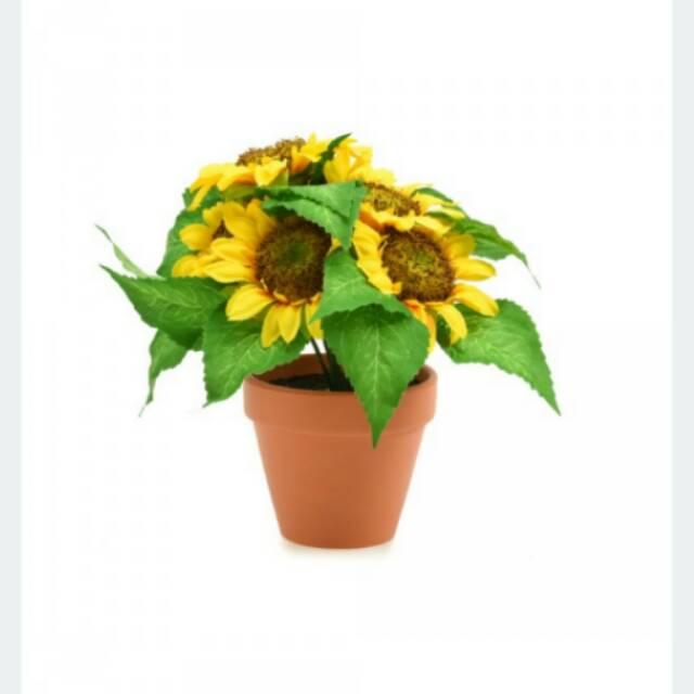 (Ace Hardware) Bunga Matahari Artificial Dengan Pot - Kuning  35e33242fd