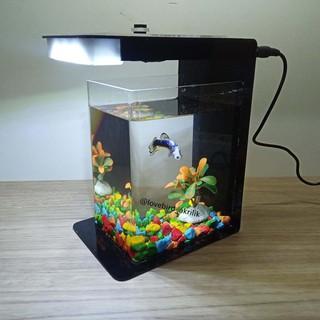 Betta Fish Tank Aquarium Mini Akrilik Mini Aquascape Aquascape Acrylic Mini Aquarium Akrilik Shopee Indonesia