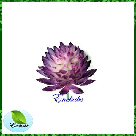 cactus suculen kaktus sukulen bunga palsu artifisial bunga