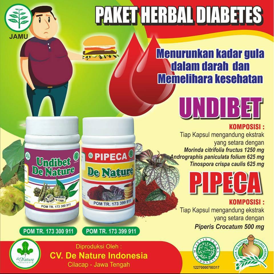 obat alami diabetes yang ampuh atasi