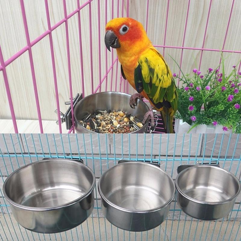 Metal Feeding Cup Bird Food Bowl Pet Parrot Birds Water Bowl Shopee Indonesia