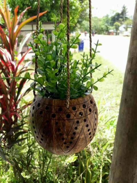 Vas Bunga Pot Bunga Tanaman Hias Gantung Dari Tempurung Kelapa Shopee Indonesia