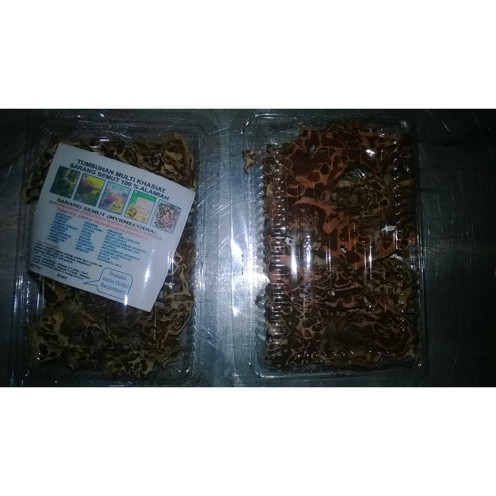 Kapsul Sarang Semut Papua Plus Shopee Indonesia Herbamedika