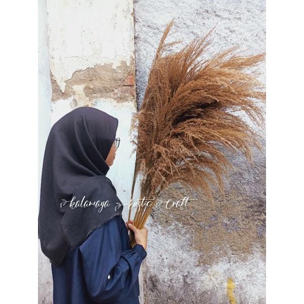Pampas Bulu Hiasan Wedding Rustic Daun Kering Dried Flower Dekorasi Rumah Palem