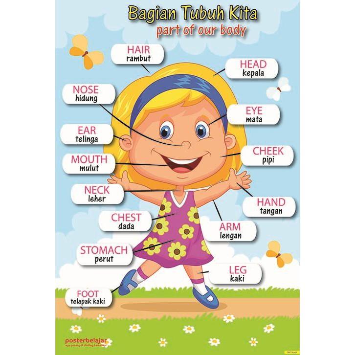 Paket Caring Girl Posbel Poster Lucu Belajar Pendidikan Mainan Edukasi Edukatif Anak Perempuan Shopee Indonesia