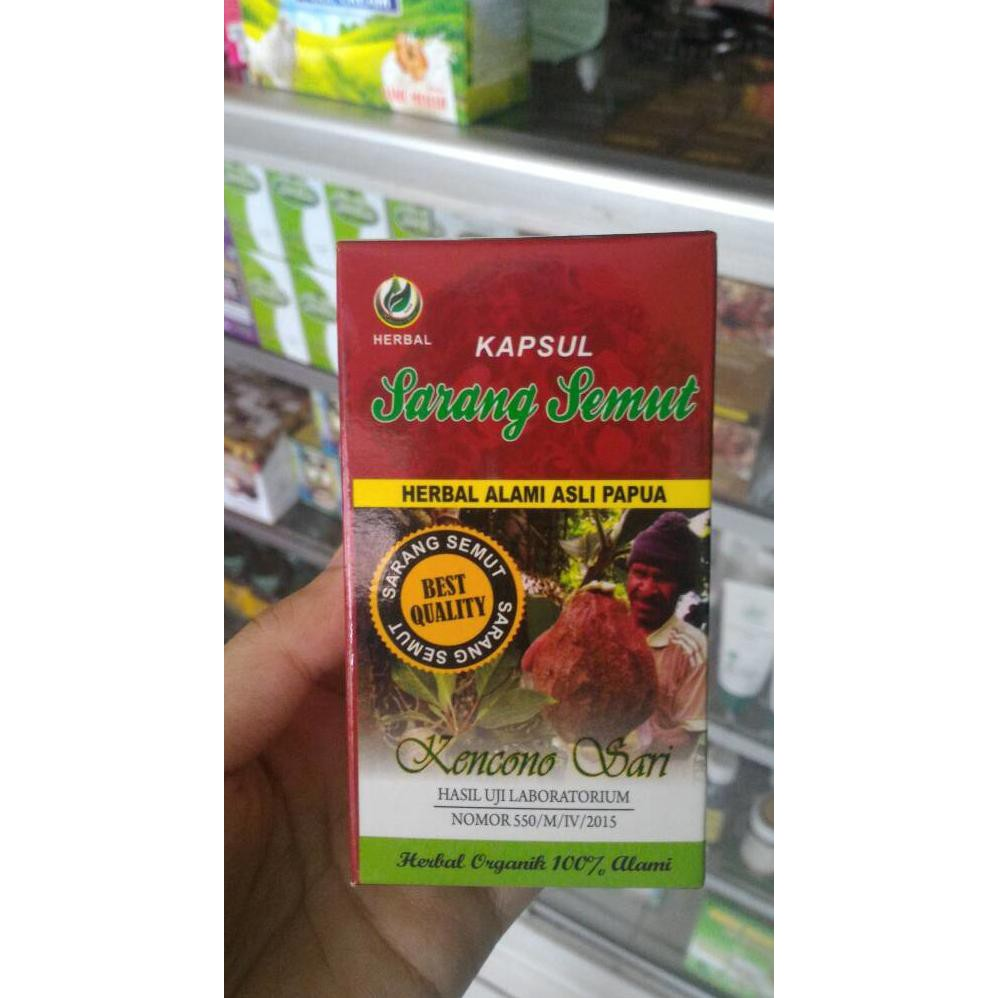 "Mecodia 100% Ekstrak Sarang Semut Papua dari Deherba (Reseller) "" | Shopee."