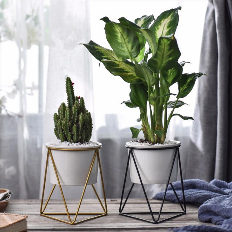 Royal Pot Bunga Kaktus Geometrik Bahan Besi Warna Hitam Putih