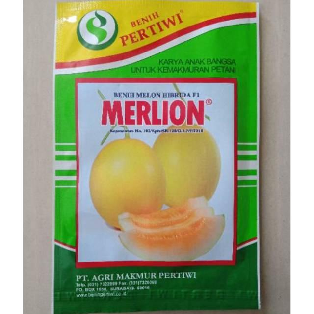 10 gr Benih Melon Kuning Emas Merlion Bibit Pertiwi