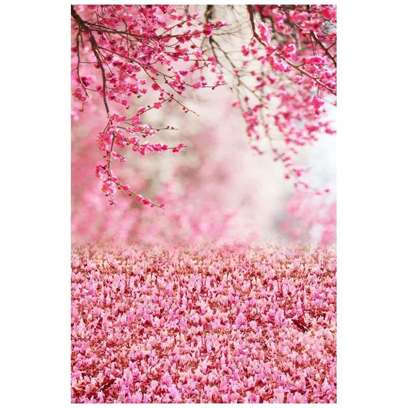 30+ Background Foto Warna Pink - Gambar Kitan