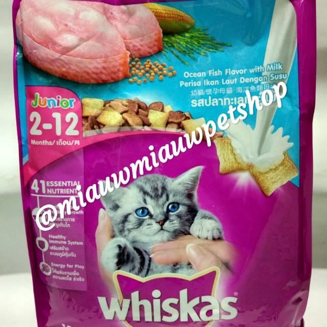 Makanan Anak Kucing Whiskas Junior Kitten Ocean Fish With Milk 1 1