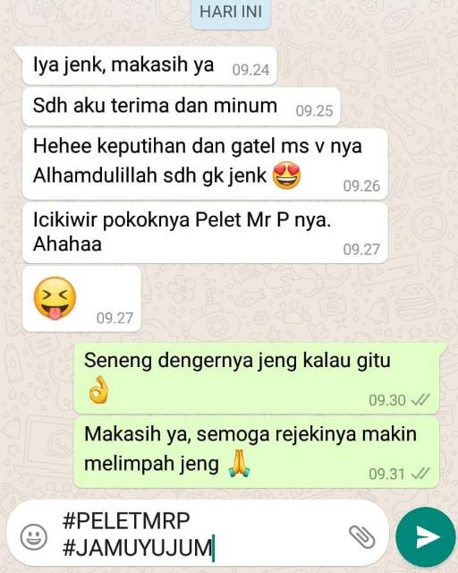 Pelet Mr P Shopee Indonesia