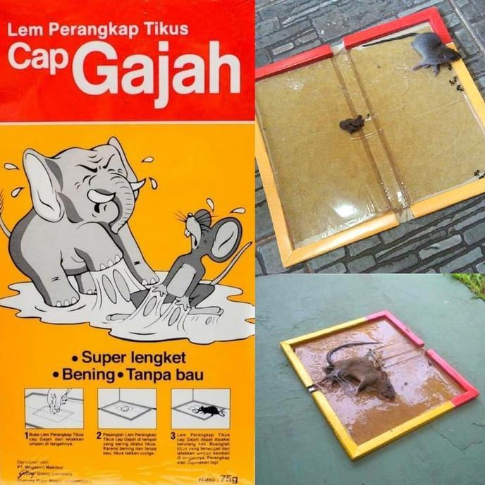 RWHG14 * Perangkap Jebakan Lem Tikus MASSAL SMART TRAP mirip Cap Gajah FE2 ,.,. | Shopee Indonesia