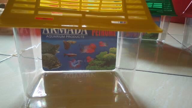 Aquarium Ikan Hias Cupang Soliter Akuarium Koi Shopee Indonesia