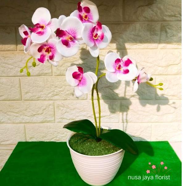 Bagus Banget Rangkaian Bunga Anggrek D15 Shopee Indonesia