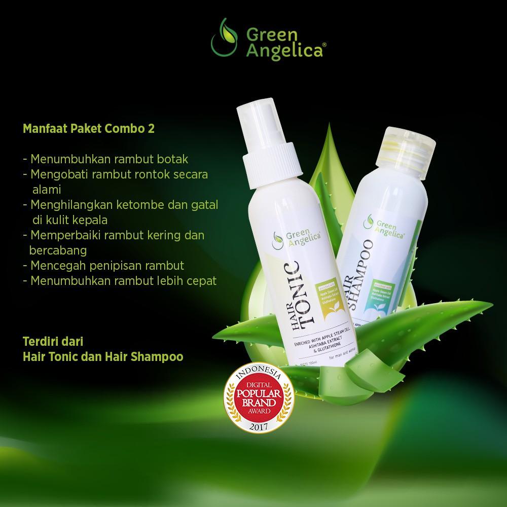 Green Angelica Combo 1 Obat Penumbuh Rambut Botak Minyak Gratis Tas Cantik Rontok Herbal Alami 100 Original Shopee Indonesia