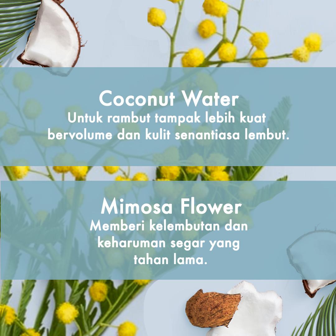 Love Beauty And Planet Shampoo Coconut Water & Mimosa Flower 400 Ml - Perawatan Rambut Lepek-3