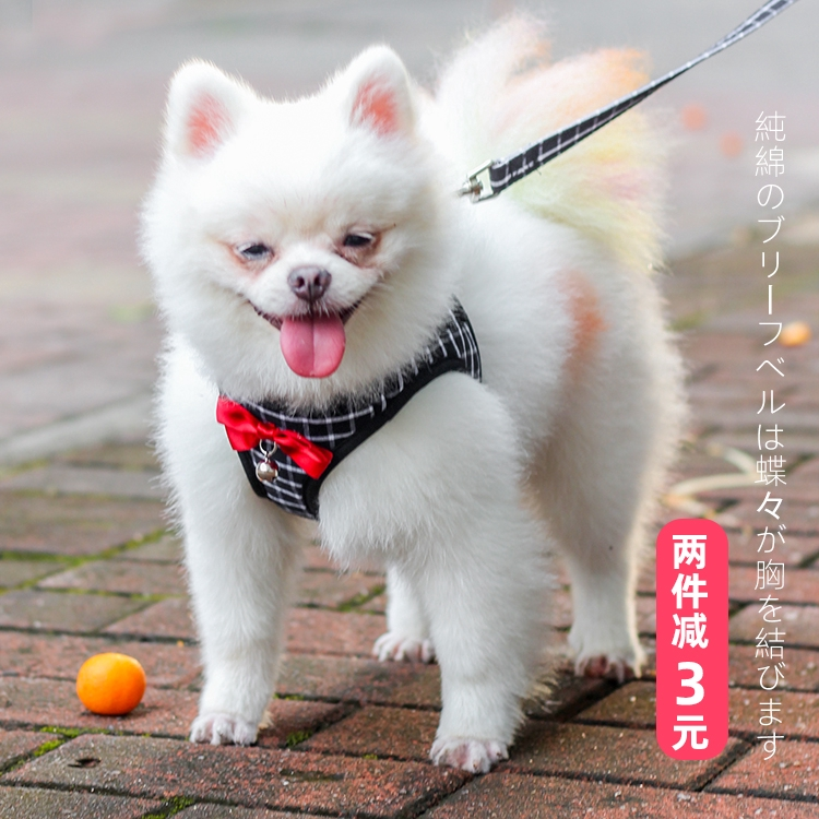 Teddy Pomeranian Puppy Dog Leash Dada Strap Vest Berjalan Dog Leash Rantai Anjing Puppy Dog Kecil Pe Shopee Indonesia
