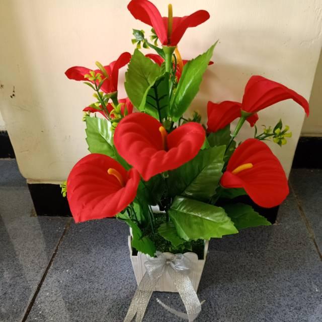 Bunga Merah Cantik Dan Indah Shopee Indonesia