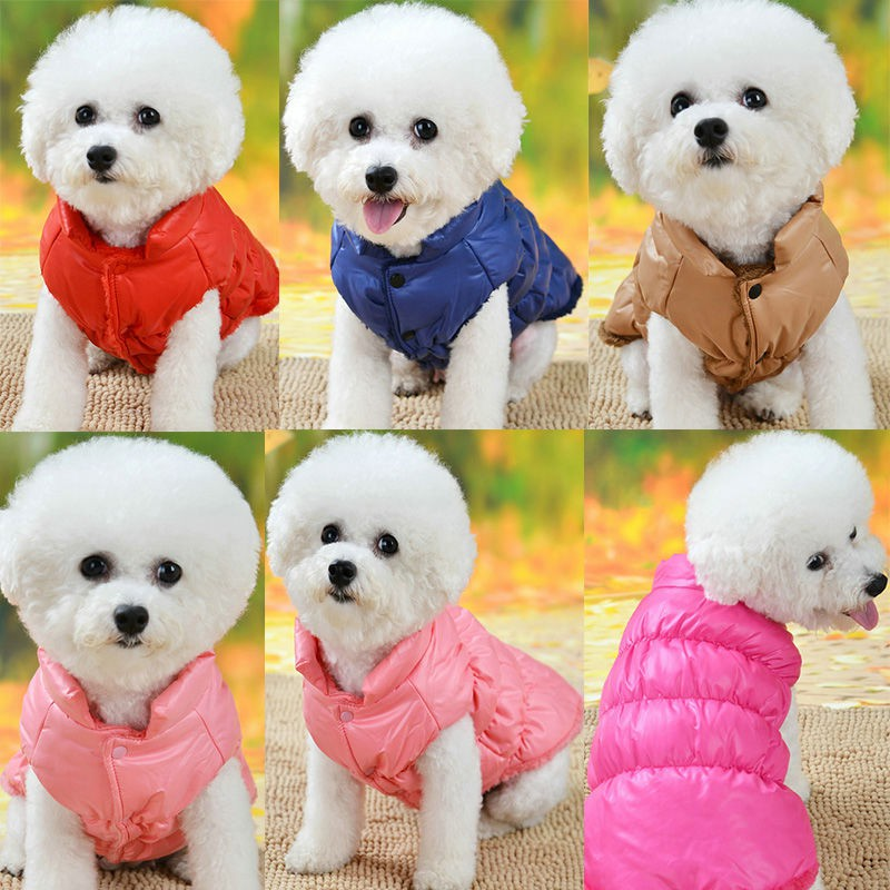 Shirts Pet Puppy Dog Clothes For Dogs T Shirts Puppy Dress Teddy Autumn Winter Than Bear Chihuahua Shopee Indonesia